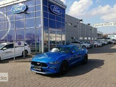 używany Ford Mustang GT Mustang VI 5.0 V8 450KM Manual 6b Nowy od Dealera! Dostępny od ręki!