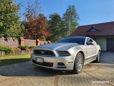 używany Ford Mustang 3,7 V6 wersja Premium 2013
