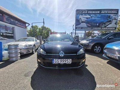 używany VW Golf VII 1.4 TSI 140 KM, LED, Klima, ALU, Nawigacja, Bluetooth, Xenon, RADAR VII (2012-)