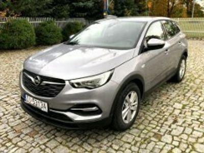 używany Opel Grandland X Enjoy 1.2 T 130KM S&S ASO Jelenia Góra