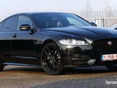 używany Jaguar XF R-Sport Black Ogrz.Szyba / Kier. / 4xFotele 20''