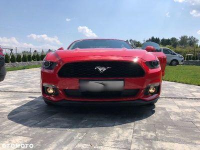 używany Ford Mustang