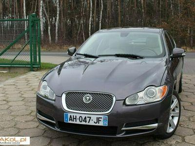 używany Jaguar XF I