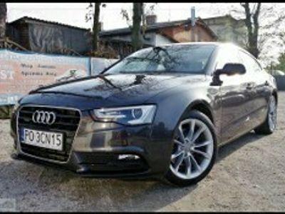 używany Audi A5 I (8T) 3.0 TDI DSG Quattro Navi Led Skóra 2xPDC Xenon