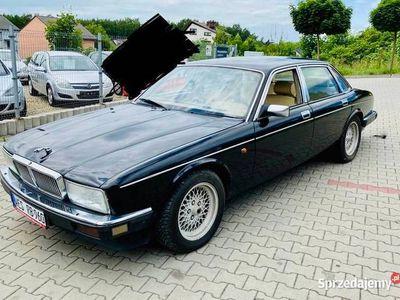 używany Jaguar XJ6 (xj40) 4.0 klasyk