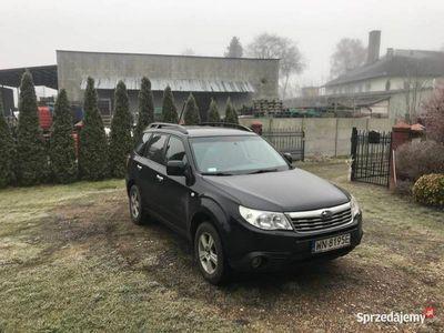 używany Subaru Forester