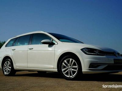 używany VW Golf FULL LED nawi ALKANTARA alusy ACC parktronik LINE ASSIST carat VII (2012-)