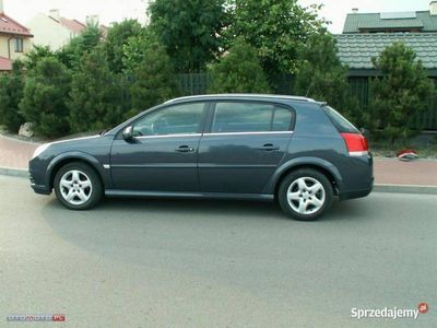 używany Opel Signum