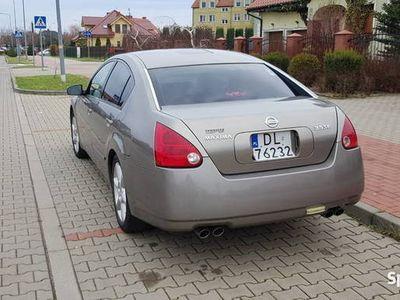 używany Nissan Maxima