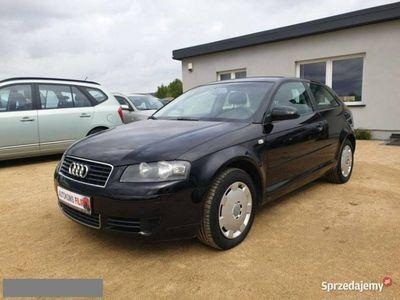 używany Audi A3 1.6dm 102KM 2006r. 174 000km