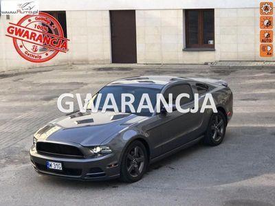 używany Ford Mustang 3.7dm3 306KM 2014r. 139 190km 3,7 V6 306KM Skóra Alu18 Wydech Magnaflow