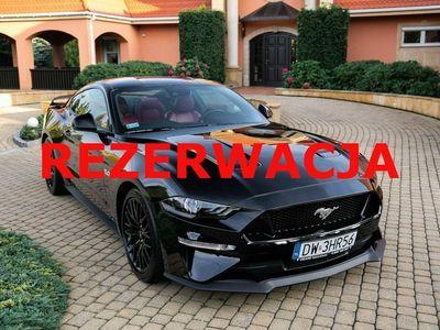 używany Ford Mustang 5dm 450KM 2020r. 21 000km