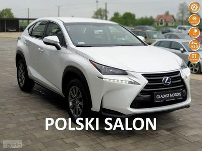 używany Lexus NX300h NX NX 14-salon Polska bezwypadkowy GWARANCJA