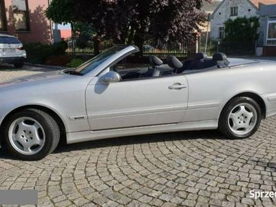 używany Mercedes CLK230 (Nr. 001) Roadster Kompressor 197 KM, Avantgarde 2000 r