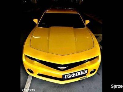 używany Chevrolet Camaro TRANSFORMERS Bumblebee! Jedyny Egzemplarz!