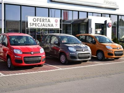 używany Fiat Panda EASY 1.2 Benzyna 69 KM Radio KLIMA LPG! Dostępny od ręki! III (2011-)