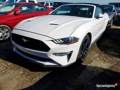 używany Ford Mustang Mustang2.3 benz. 310 KM autom. 06/2018 VI (2014-)