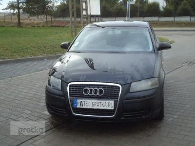 używany Audi A3 II (8P) 1.9 TDI