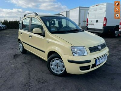 używany Fiat Panda SALON PL / KLIMATYZACJA / Wspomaganie City / GAZ II (2003-2012)