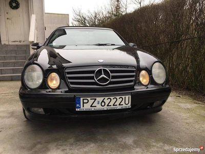 używany Mercedes CLK200 Kompressor Cabrio Elegance + LPG