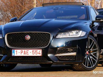 używany Jaguar XF R-Sport Ful Panorama TFT Ogrz.Szyba+Kier.+4x Fotel