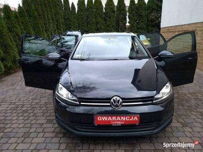 używany VW Golf Xenony DSG Manetki F1 Salon PL 1.2 TSI 110 KM 43800 netto