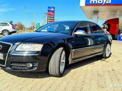 używany Audi S8 S8 Najtańsze5.2 V10 z Ceramiką Możliwa Zamiana D3 (2002-2009)
