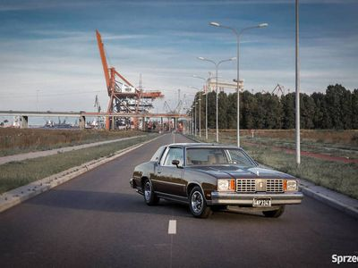 używany Oldsmobile Cutlass 1979 5.7 - 20 lat w moim posiadaniu
