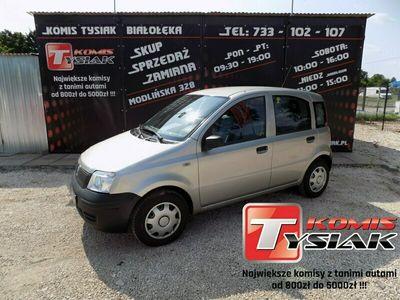 używany Fiat Panda !! BIAŁOŁĘKA !! 1.1 Benzyna, 2004 rok produkcji !!KOMIS TYSIAK!! II (2003-2012)