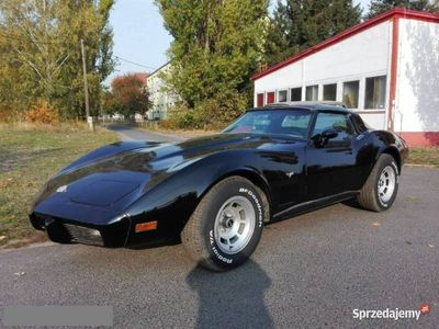 używany Chevrolet Corvette 1978 v8 350 manual 4 biegi KLIM