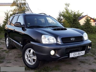 używany Hyundai Santa Fe 2dm 113KM 2004r. 284 000km