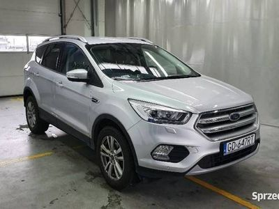 używany Ford Kuga 16-, 1.5 EcoBoost FWD Trend ASS