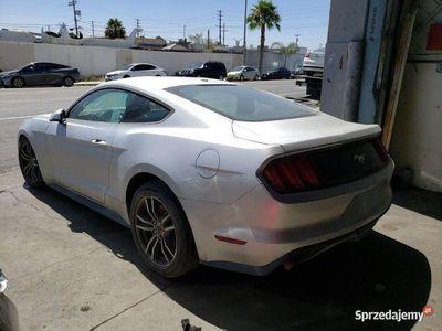 używany Ford Mustang VI premium, oferta sprzedaży