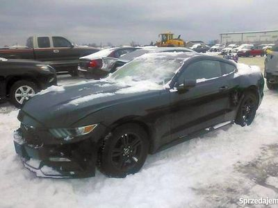 używany Ford Mustang 3.7 V6 304KM +48 782236023