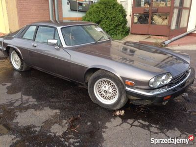 używany Jaguar XJS 5.3 V12 - bezwypadek! I-szy właściciel!