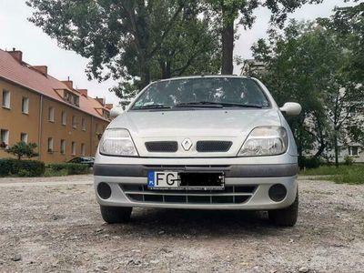 używany Renault Scénic SCENIC
