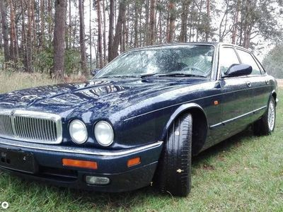 używany Jaguar X300 XJ