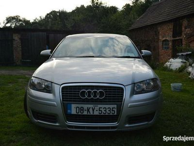 używany Audi A3 8P anglik 1.9 TDI