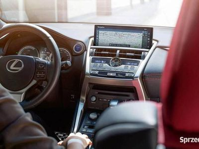 używany Lexus NX300h 4×4 ELEGANCE OPTIMUM 2019