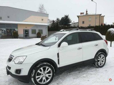 używany Opel Antara COSMO 184KM 4x4 Biała perła