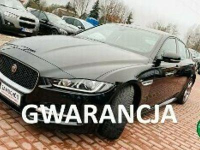 używany Jaguar XE I R-Sport, Salon PL, Serwis