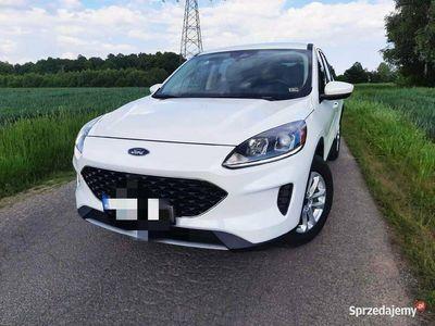 używany Ford Kuga /Escape 2020r 1.5 Eb 183 km 4WD automat.