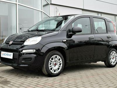 używany Fiat Panda seria 3 Easy 1.0 70 KM Hybrid