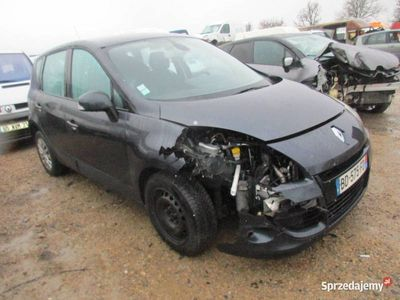 używany Renault Scénic III BD575