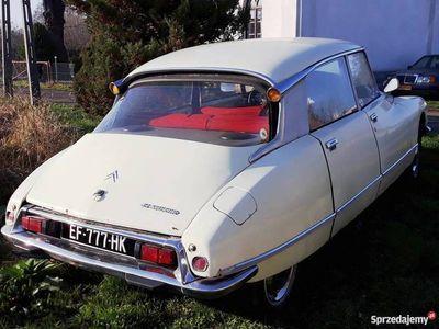 używany Citroën DS Dspecial 1975
