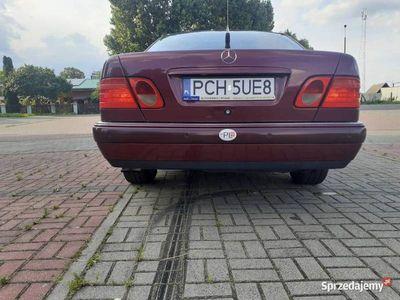 używany Mercedes E290