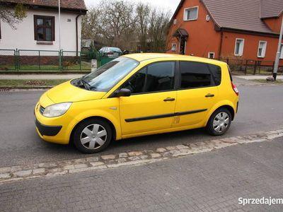 używany Renault Scénic 2005 1,9 dCi Vat1 Ciężarowy 2-osobowy ZAMIANA