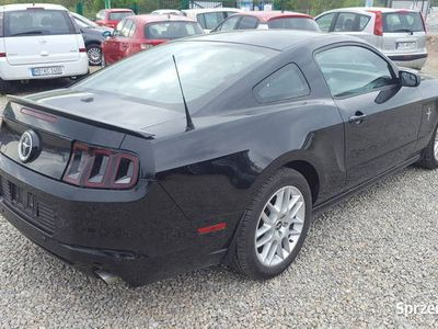 używany Ford Mustang V 3.7 PREMIUM