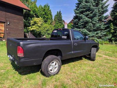 używany Dodge Dakota - 2000r - 157 900 km - Benzyna - SUV