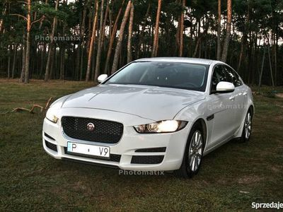 używany Jaguar XE prestige Fuji White 2.0 D 180KM